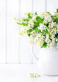 White bird cherry branches in a ceramic jug — Stock Photo