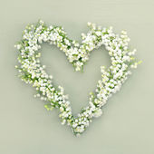 Heart shaped flower wreath on green background — Stock Photo