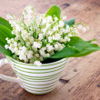 Bouquet of lily of the valley — 图库照片