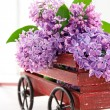 Purple lilac flower bouquet in a wooden carriage — Stock Photo