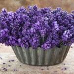 Постер, плакат: Fresh bouquet of lavenders