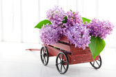 Decorative wooden carriage full of lilacs — Stock Photo