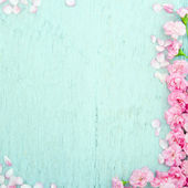 Blue wooden background with pink flowers — Stock Photo