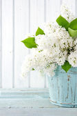 White lilac spring flowers in a blue vase — Stock Photo