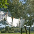 Laundry drying on a clothesline — Zdjęcie stockowe