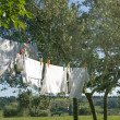 Laundry drying on a clothesline — Stok fotoğraf