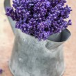 Closeup of purple lavender bouquet — Stock Photo