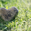 Heart shaped stone — Stock Photo