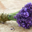 Bouquet of fresh lavenders — Stock Photo #32152963
