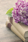 Old books with pink flowers — Stock Photo