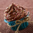 Chocolate cupcake in a blue wrapper — Stock Photo