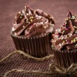 Homemade chocolate cupcakes — Stock Photo #32764413