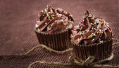 Homemade chocolate cupcakes — Stock Photo