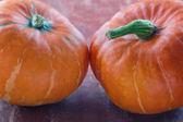 Two halloween pumpkins — Stock Photo