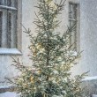 Christmas tree outside in snowy garden — Stock Photo