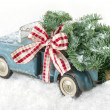 Blue toy truck carrying a Christmas tree — Stock Photo