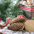Christmas greetings — Stockfoto
