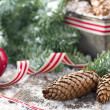 Decorative rustic Christmas setting — Photo