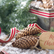 Christmas greetings — Stock Photo #36061393