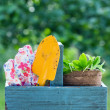 Stock Photo: Gardening tools in wooden tool box