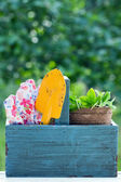 Gardening tools in a wooden tool box — Stock Photo
