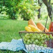 Vintage picnic basket with fruit — Stock Photo #43019241