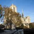 Paris - Notre dame — Stock Photo #15681143