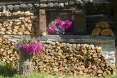 Cottage flowers — Foto de Stock