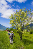 Young hikers trekking with guides — Stock Photo