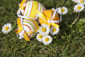 Easter eggs and daisies — Stock Photo