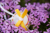 Easter egg and flowers — Stock Photo
