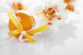 Orange Easter egg — Stock Photo