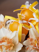 Easter eggs and daffodils — Stock Photo