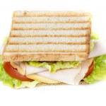 Sandwich on white — Stock Photo #45697493