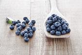 Blueberries — Stock Photo