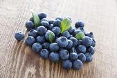 Färska blåbär — Stockfoto