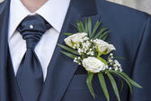 Groom detail — Stock Photo