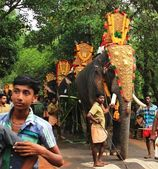 Decorated elephants in parade at the annual festival, Varkala, India — Stock Photo