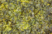 Large thin sheet of pressed seaweed — Stock Photo
