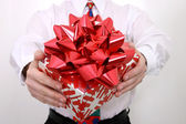 Red Bow Gift — Stockfoto