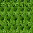 Punctuation Made of Parsley — Stock Photo #12783362