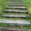Stock Photo: Steps In Grass