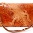 Stock Photo: Alligator Purse