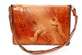 Alligator Purse — Stock Photo