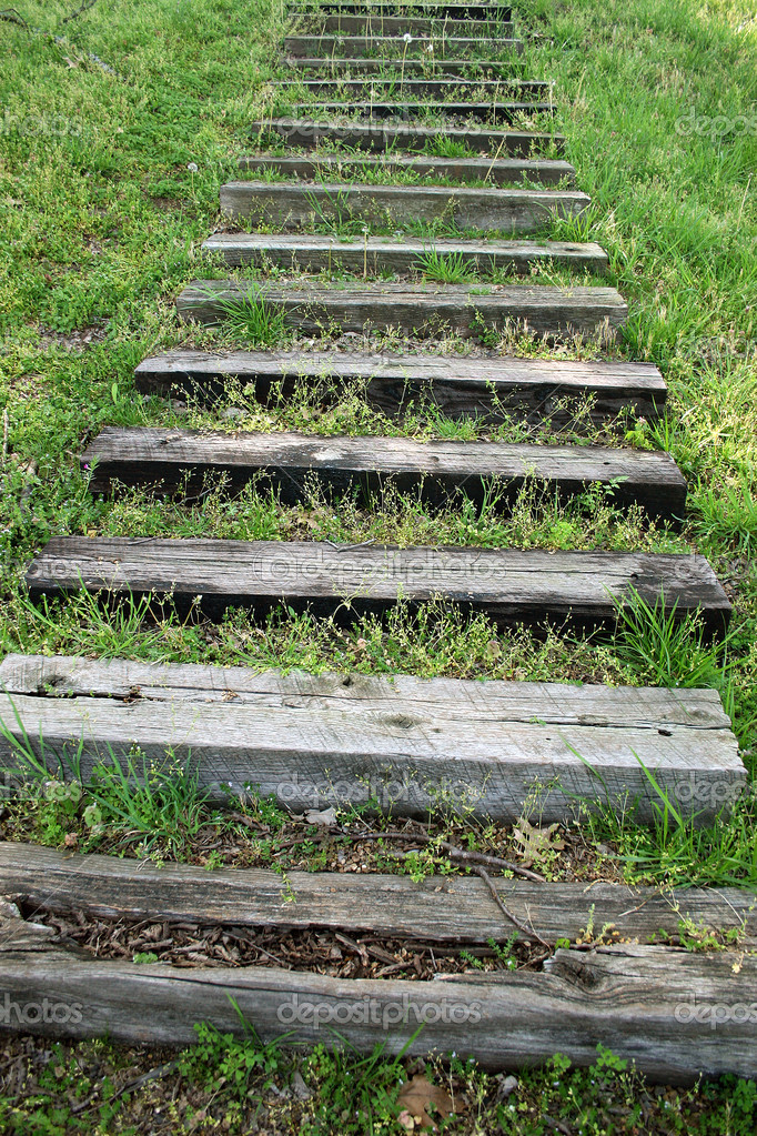 Old wooden steps in the grass. — Stock Photo #12784575