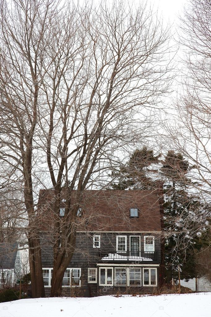 Small Maine house in the winter season. — Stock Photo #12784591