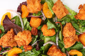 Crispy Chicken Salad — Stockfoto