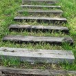 Steps In The Grass — Stock Photo