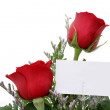 Roses with Gift Card (8.2mp Image) - Stock Photo