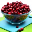Glass Bowl of Fresh Raw Cranberries - Stock Photo
